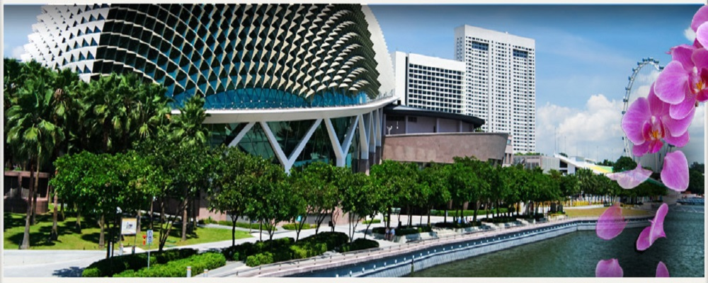 Some Of The Best Things To Do In Singapore!