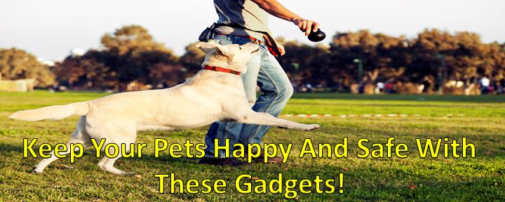 Keep Your Pets Happy And Safe With These Gadgets!